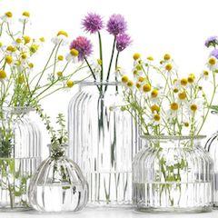 Mejor precio productos aromaterapia