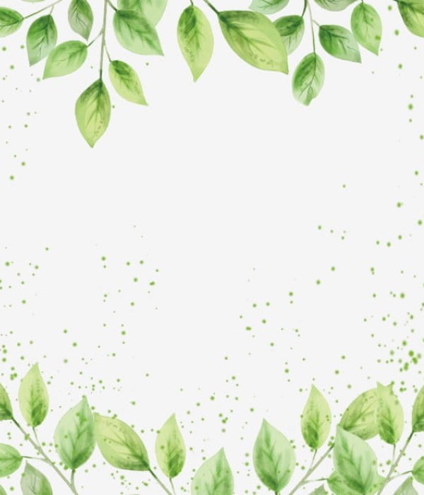 Productos Depurativos Naturales   Vitasanis